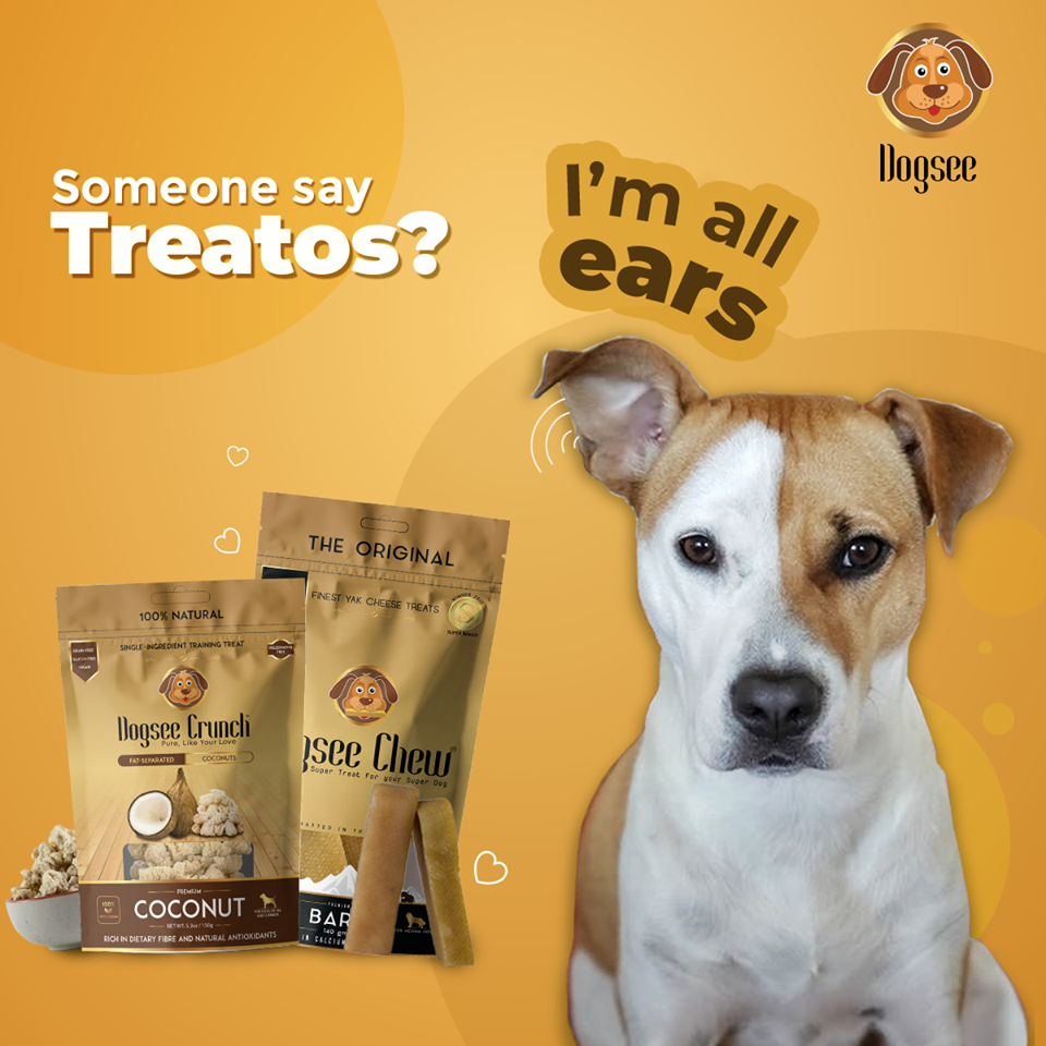 dog treat guide
