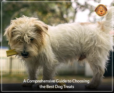 A Comprehensive Guide to Choosing the Best Dog Treats