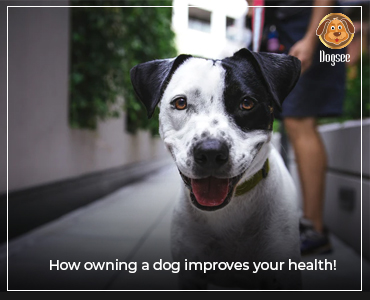 How Owning a Dog Improves Your Health!