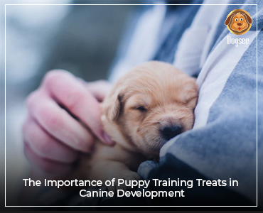 The Importance of Puppy Training Treats in Canine Development