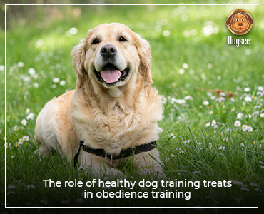 The Role of Healthy Dog Training Treats in Obedience Training