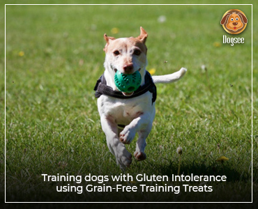 Training Dogs With Gluten Intolerance Using Grain-free Training Treats